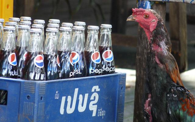 """""""Ein Hühnchen und eine Cola, bitte!"""""""