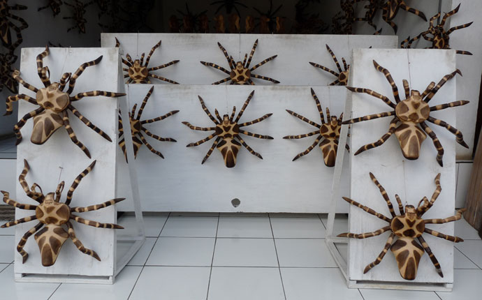 """Die spinnen, die Indonesier!"""