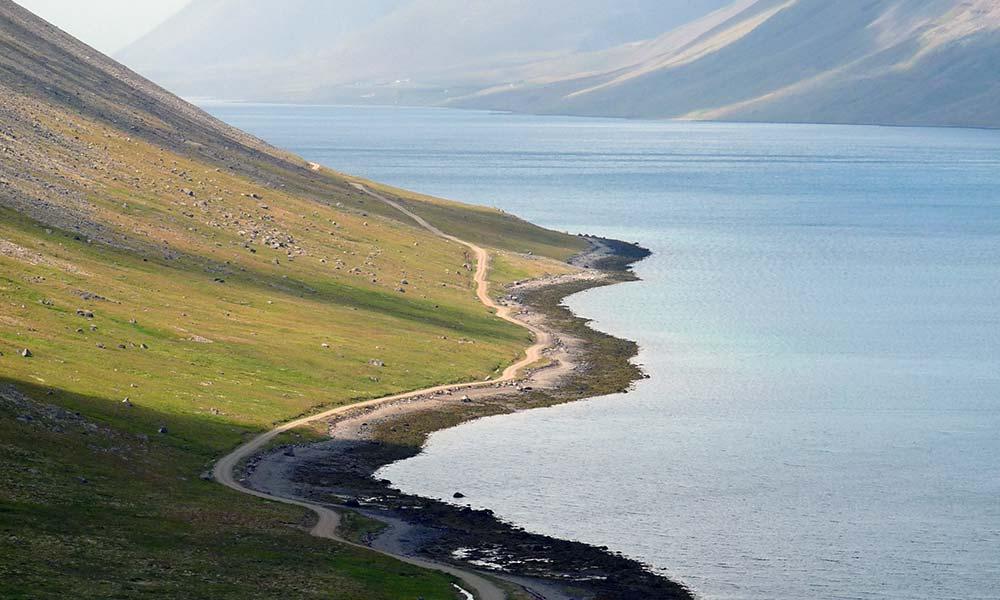 Gewundene Straße am Fjord in Island