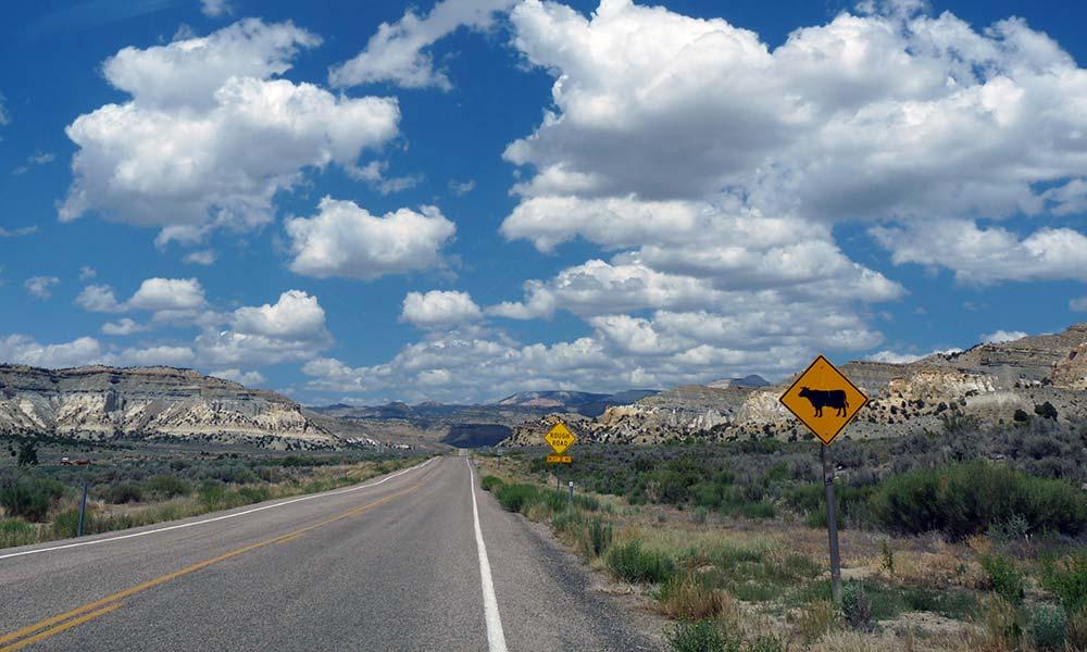 Straße durch die Berge, USA