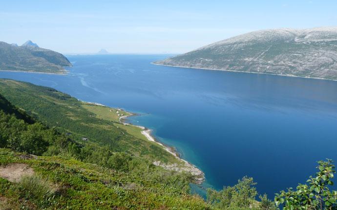 Blick vom Berg auf das Meer in Norwegen.