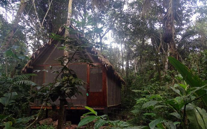 Lodge im Regenwald in Bolivien