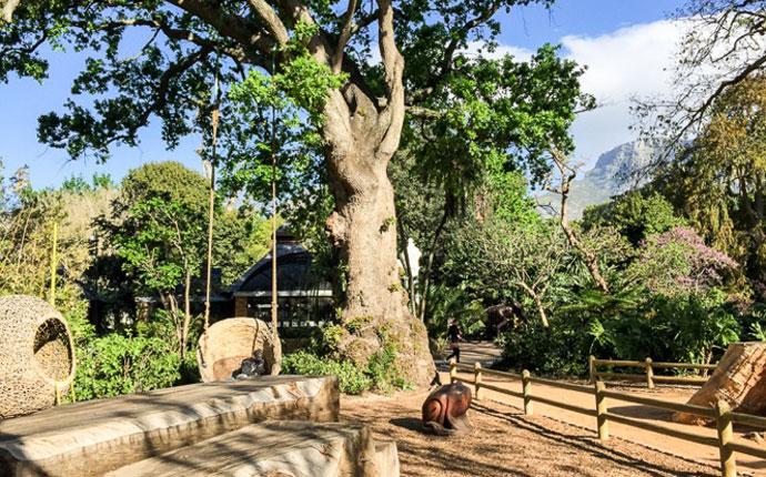 Company's Garden in Kapstadt Südafrika