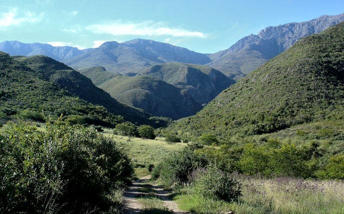 Gronfontein Südafrika