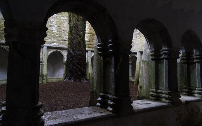 Muckross Abbey in Irland