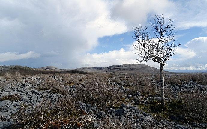 Wanderung durch den Burren Nationalpark