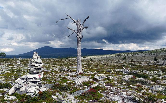 Im Nationalpark Femundsmarka, karge Berge