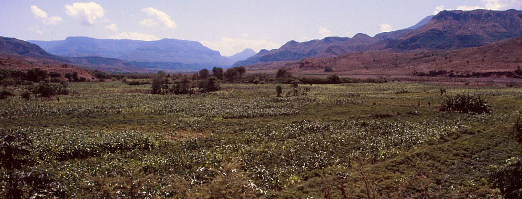 Feld in Äthiopien