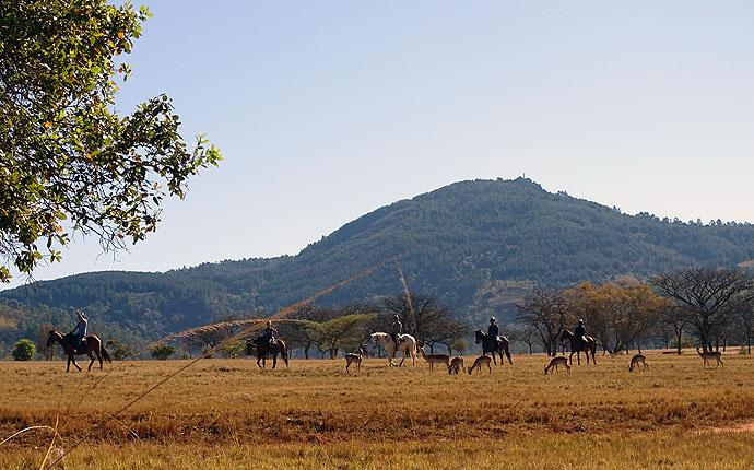Reiten im Mlilwane Wildlife Sanctuary
