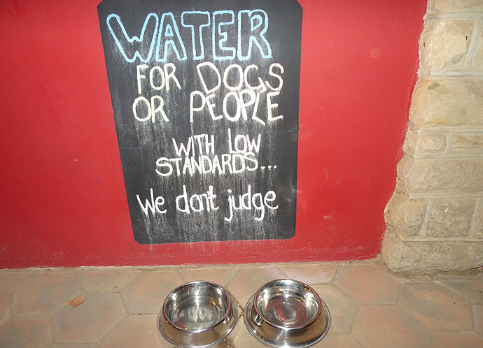 """Wasserschüsseln mit Schild """"Water for Dogs or People"""""""