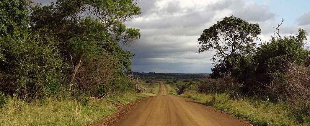 Auf Selbstfahrer-Safari in Südafrika auf einer langen Sandstraße