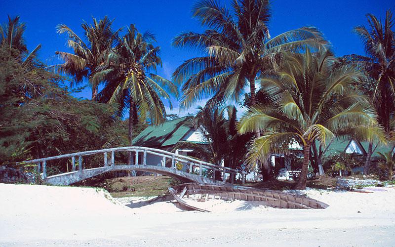 Ko Phi Phi in Thailand: Strand mit Palmen