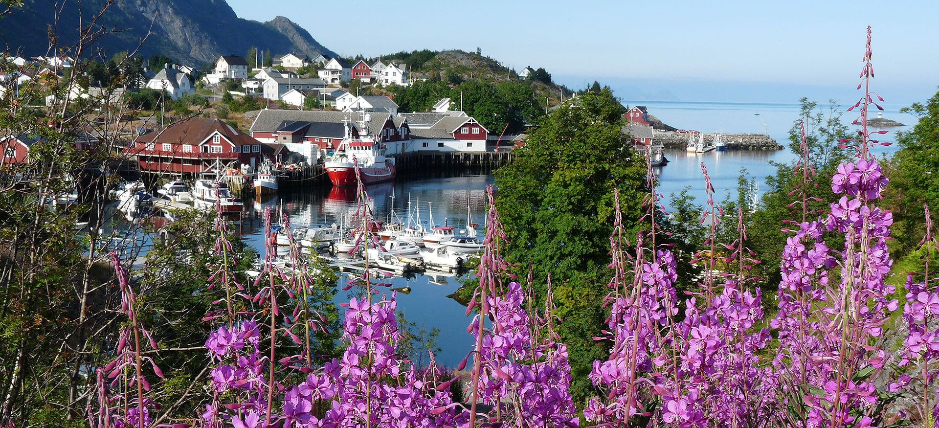 Dorf auf den Lofoten in Norwegen