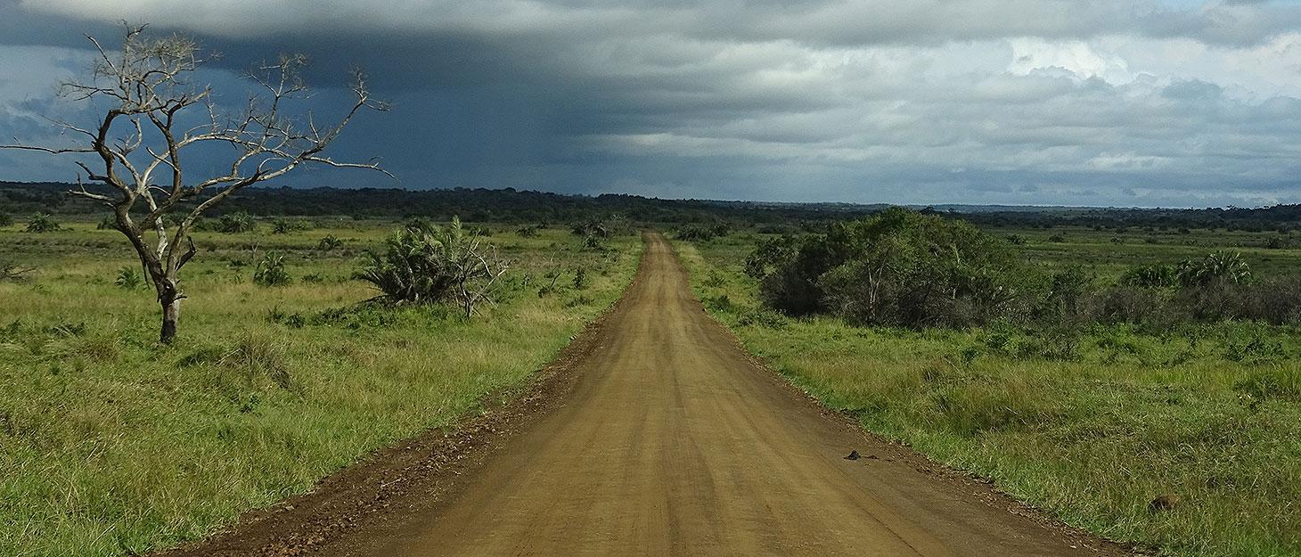 Staubpiste im iSimangaliso Wetland Park bei St. Lucia