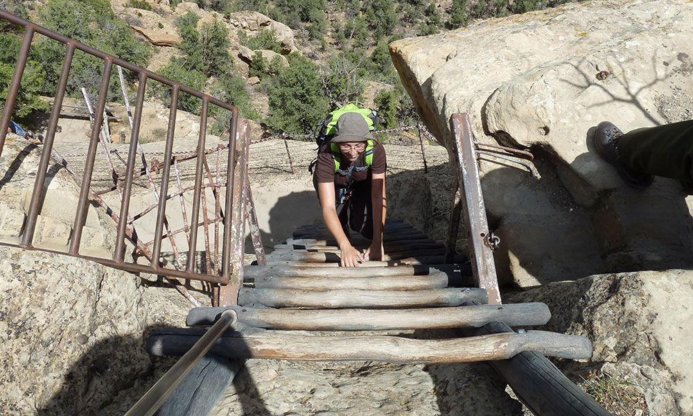 Sabine steigt eine steile Holzleiter hinauf.