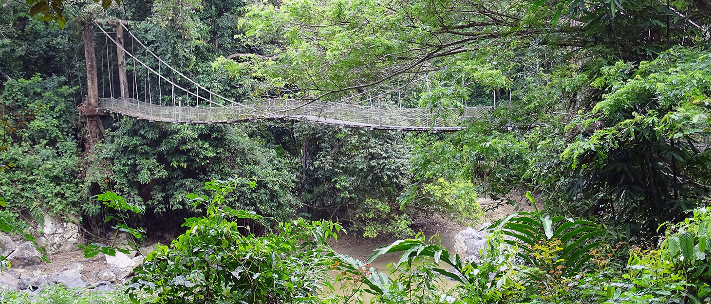 Hängebrücke am Danum Valley Field Centre in Borneo