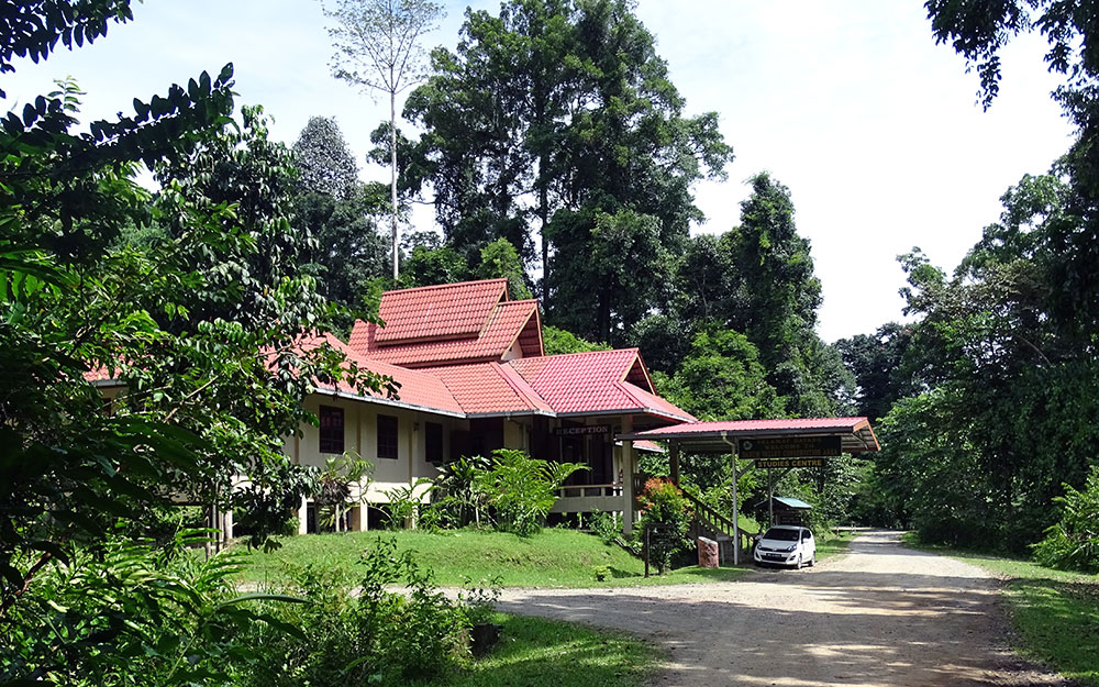 Haus im Wald im Danum Valley Field Centre
