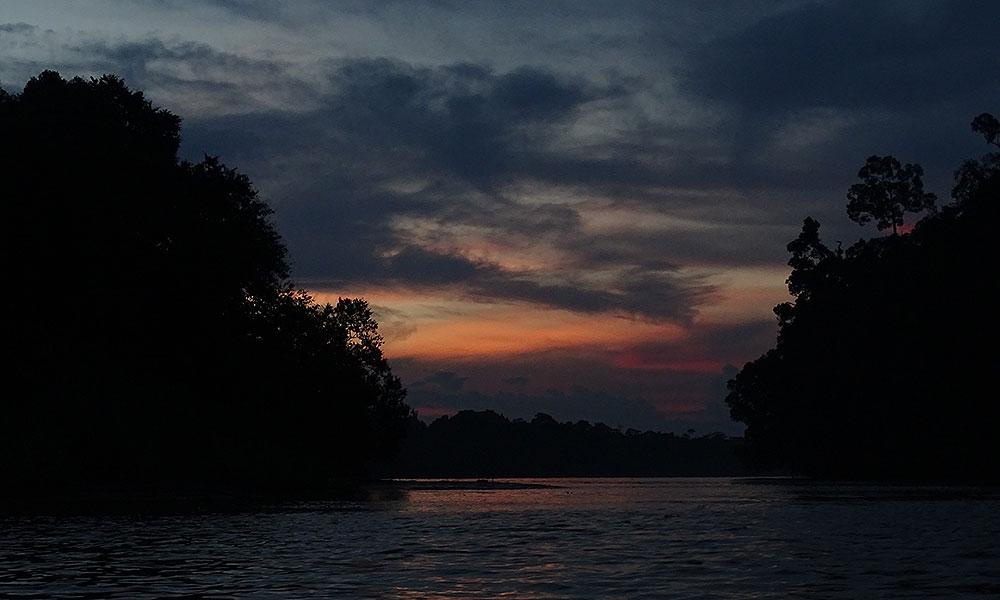 Sonnenuntergang über dem Kinabatangan River