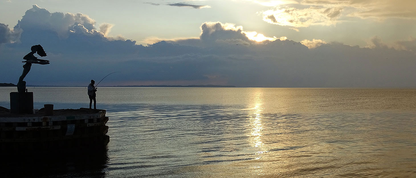 Angler im Sonnenuntergang auf Fyn