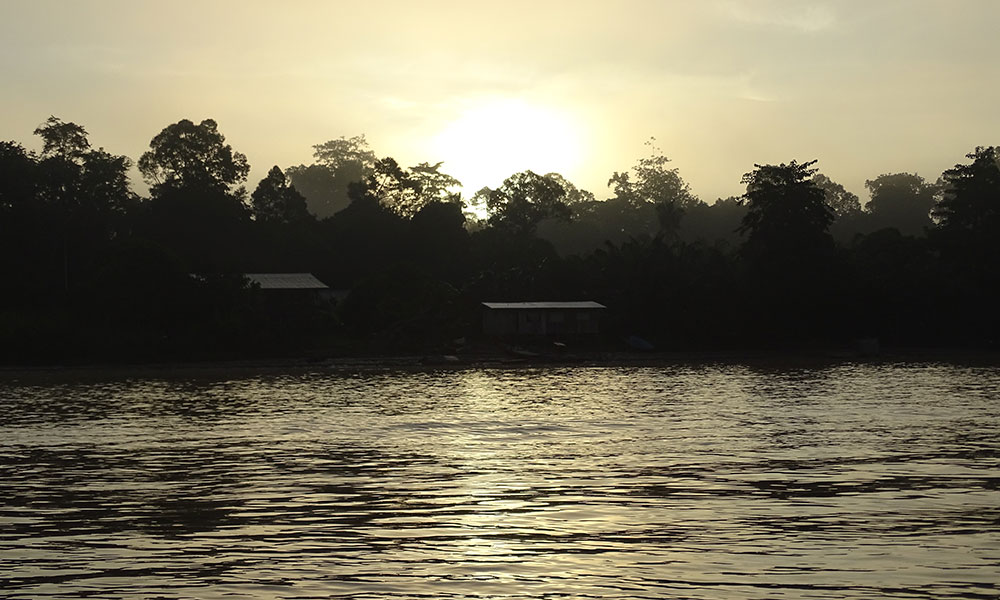Sonnenaufgang über dem Kinabatangan River