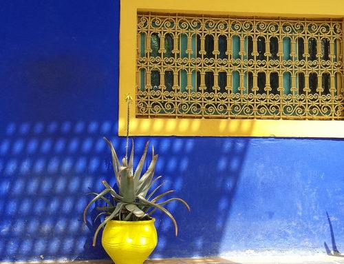 Oase in Marrakesch: der Jardin Majorelle