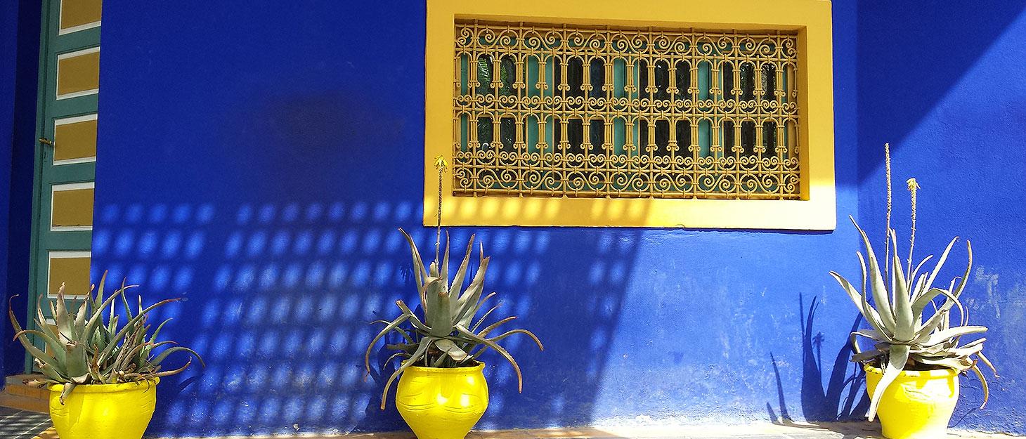 Blaue Wadn mit gelbem Fenster und Blumentöpfen im Jardin Majorelle