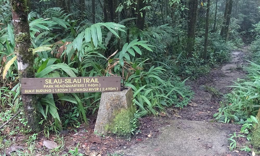 Eingang zum Silau-Silau Trail