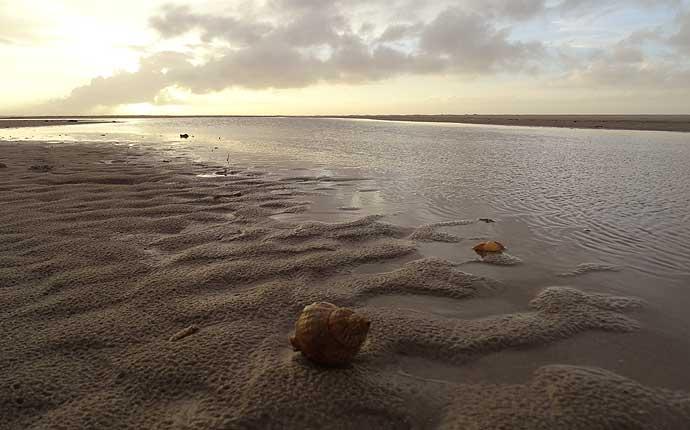 fanoe-strand
