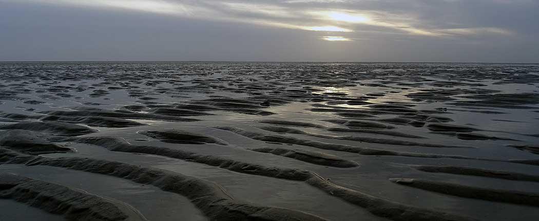 Wattenmeer auf Fanø