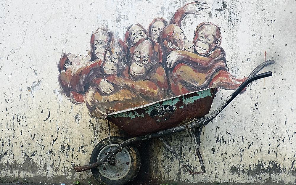 Streetart: Orang-Utans in Schubkarre