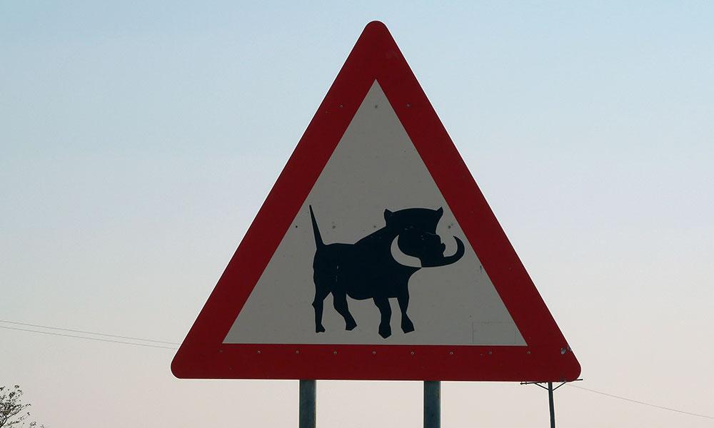 Straßenschild mit Warzenschwein in Namibia