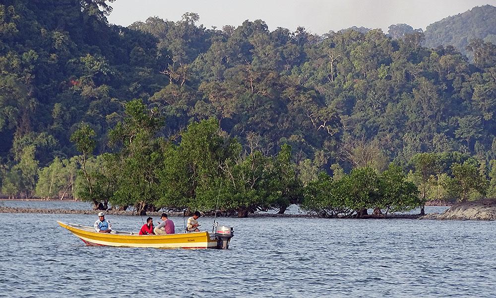 Fischer vor einem Mangrovenwald