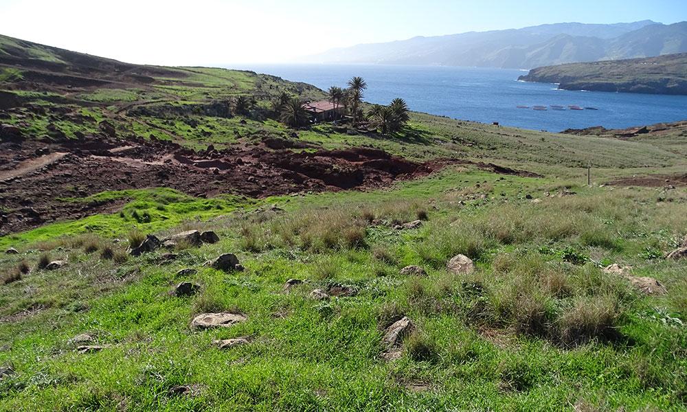 Madeira: Haus unter Palmen am Meer