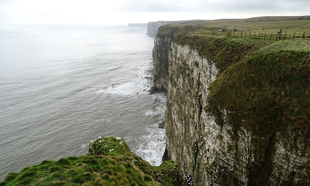 Bempton Cliffs, die Klippen mit Seeblick