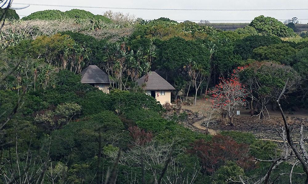 Hütten im Wald am Oribi Gorge