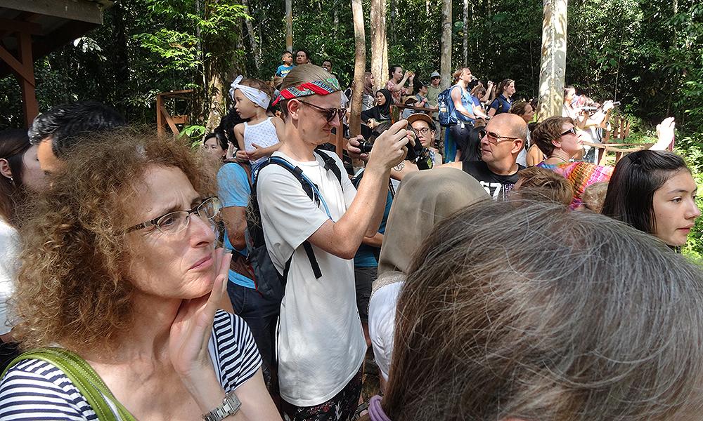 Viele Menschen mit Kameras