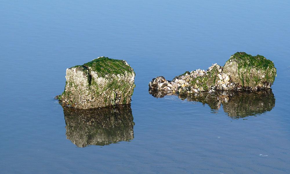 Zwei Felsen im Meer