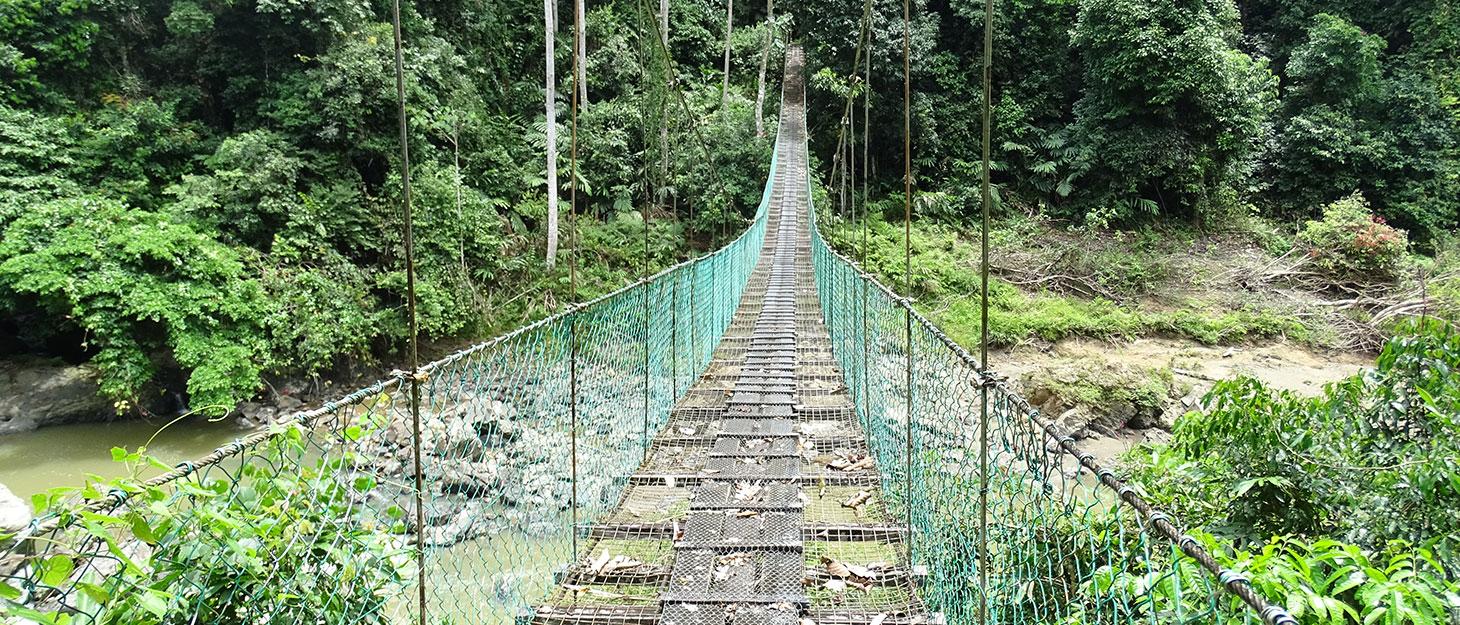 Hängebrücke in Borneo