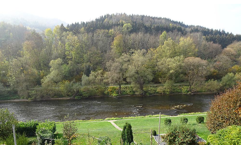 Fluss mit Wald dahinter