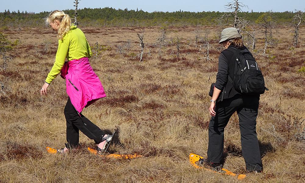 Zwei Frauen im auf Moorschuhen im Moor