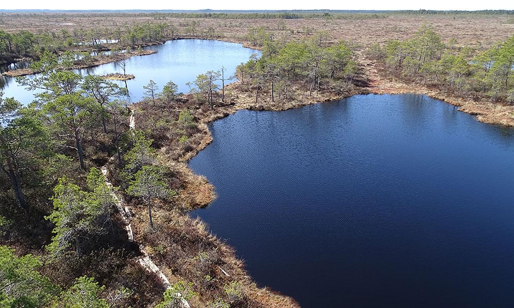 Moorseen in Estland