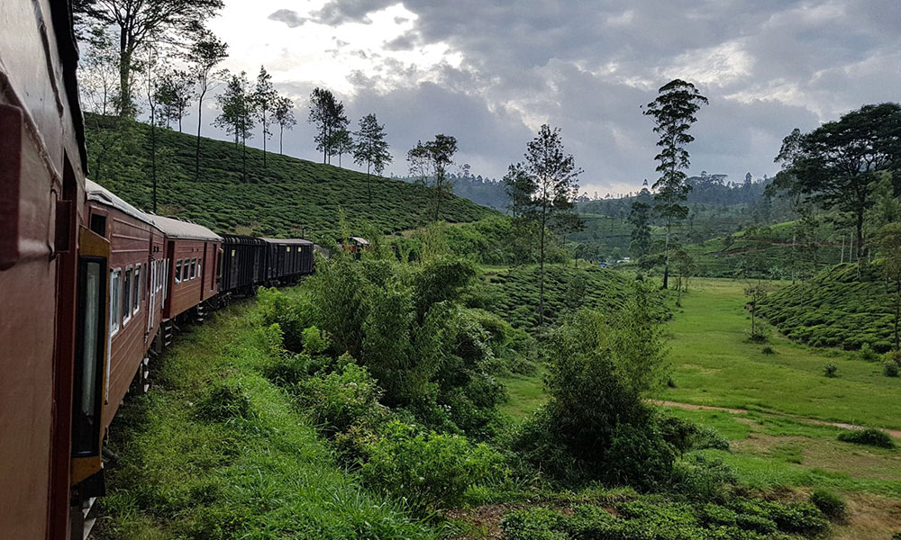 Zug durchs grüne Hochland von Sri Lanka