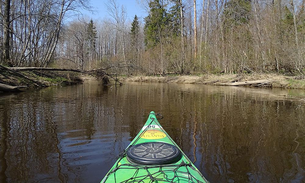 Kayak auf dem Fluss