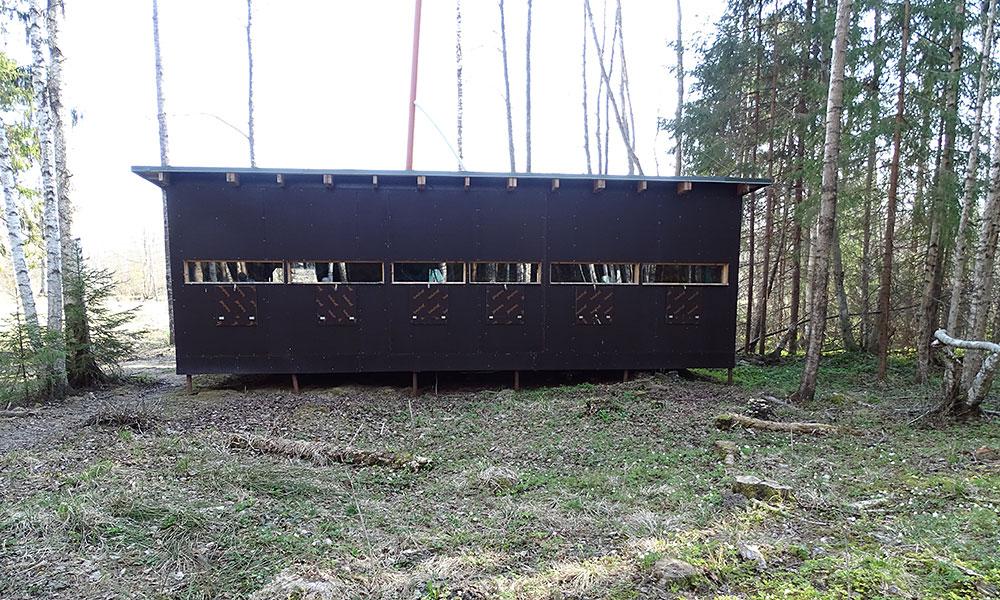 Hütte im Wald zum Bären beobachten
