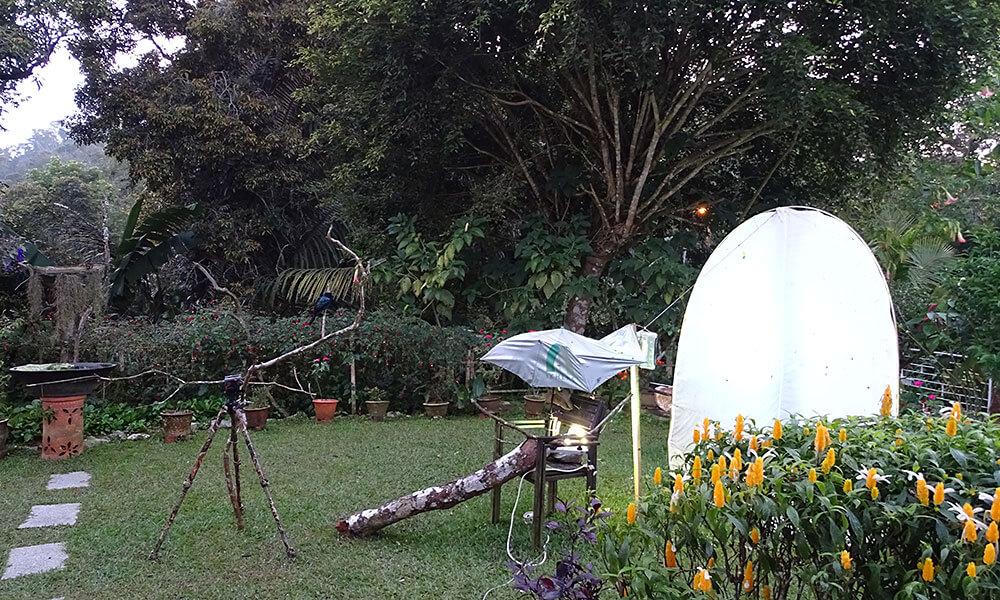 Leinwand im Garten