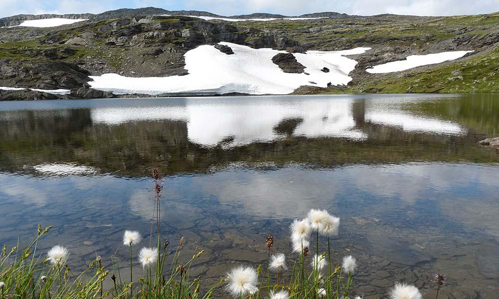 Eis am See in Norwegen