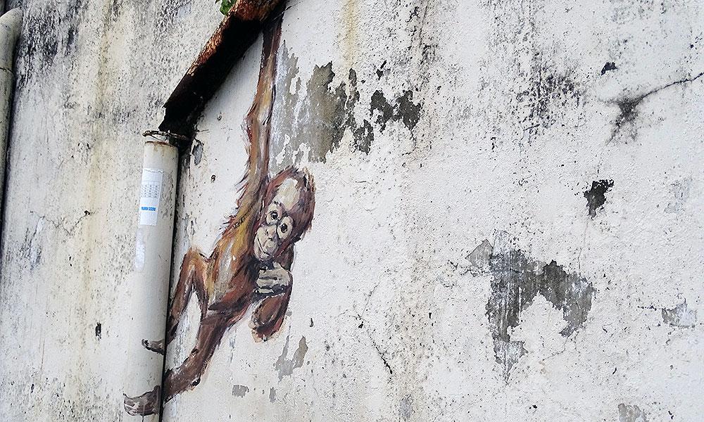 Streetart: Orang-Utan an einer Regenrinne