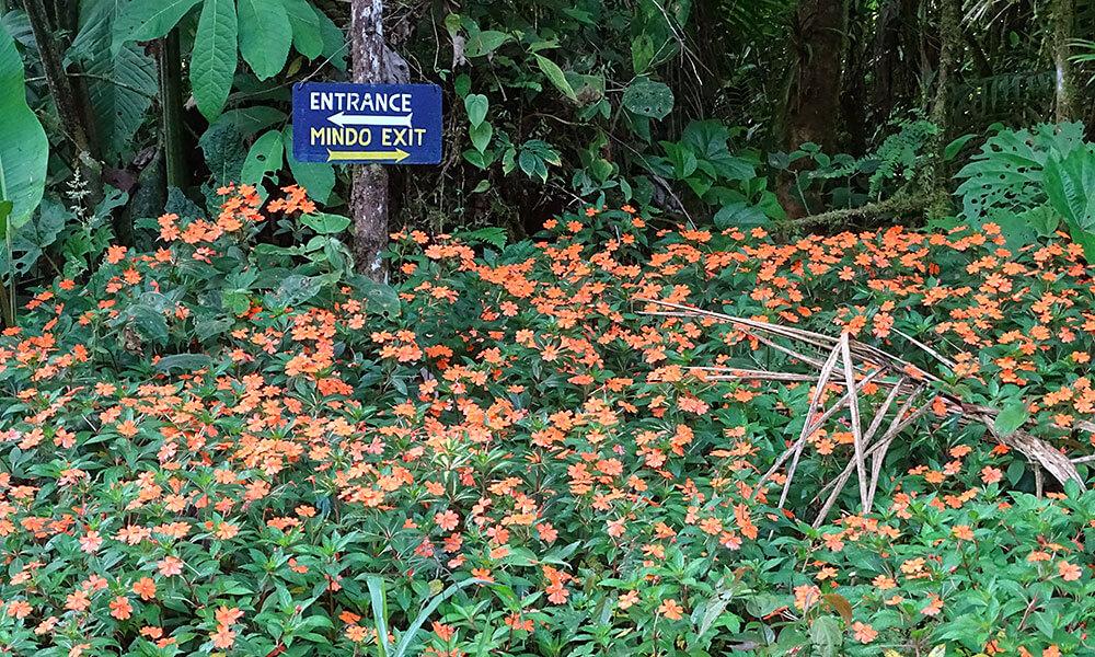 Schild vor Blumenwiese