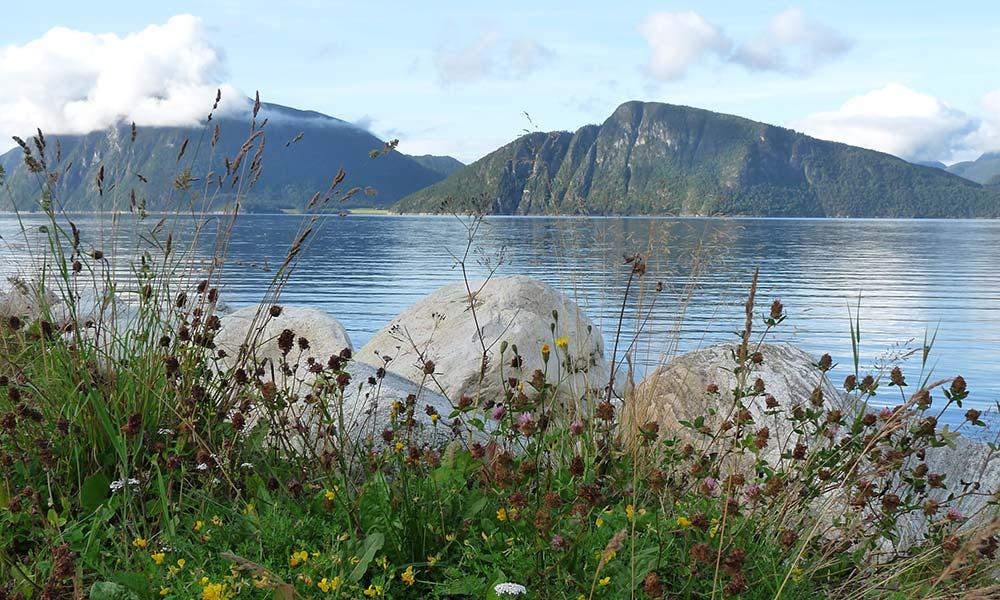 Blick über einen See in Norwegen