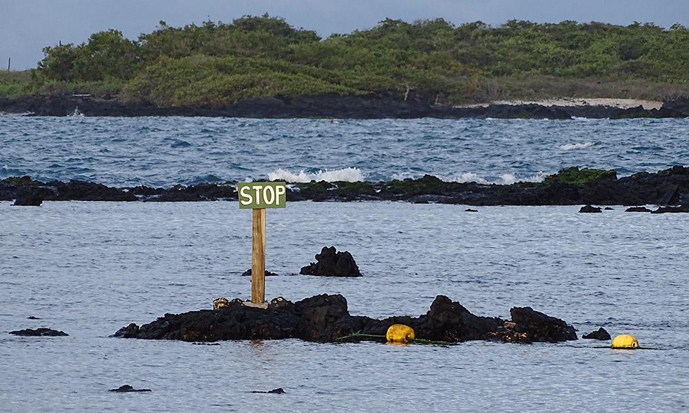 Stopschild auf einem Felsen im Meer